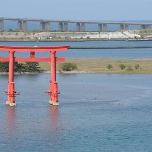 おはよう!南浜名湖 5月24日 舞阪シラス漁定休漁日、舞阪もちかつを船団出漁中!
