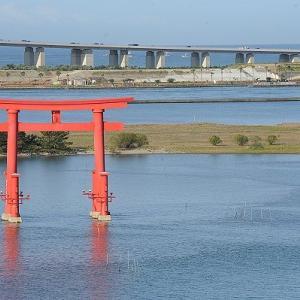 おはよう!南浜名湖 5月25日 舞阪・新居シラス漁出漁・かつを・アカムツ漁の海