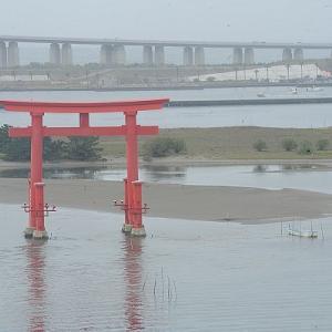 ただいま!南浜名湖 6月14日 漁のない日曜、浜名湖は釣りの海