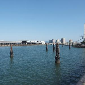 シラス船41統フル出漁 空っぽの舞阪漁港