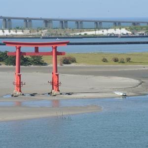 おはよう!南浜名湖 8月14日 海辺の夏休み