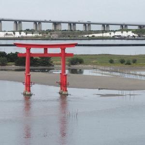おはよう!南浜名湖 9月24日 台風波おさまりは海苔網仕事で待つ