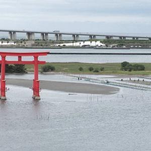 おはよう!南浜名湖 9月25日 東風の海にアマダイ漁出漁 弁天島に海苔網広がる