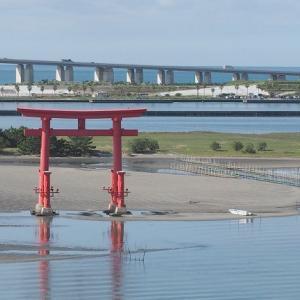 おはよう!南浜湖 9月28日 夏漁は月末まで舞阪漁港 浜名湖はカニの海