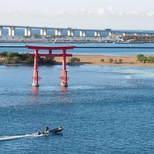 おはよう!南浜名湖 12月3日 冬の海は一日替わり 舞阪漁港全漁休漁の海