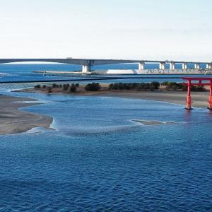 ただいま!南浜名湖 1月20日 青い海に還る