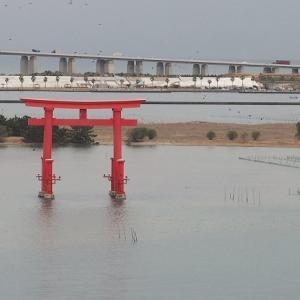 おはよう!南浜名湖 1月28日 雨の前の静か広がる海