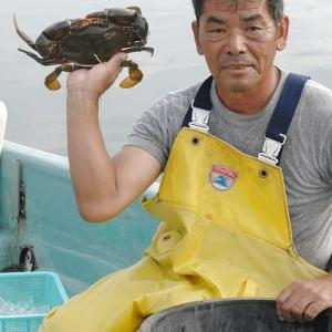 浜名湖ドウマン夏の最盛期だよ!村櫛漁師高山さんのオススメ≫