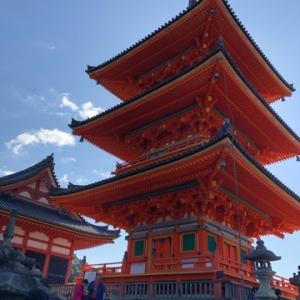 京都観光。。。