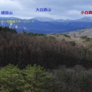 霧氷煌めく初冬の小白森山