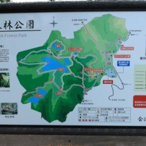 蓋沼森林公園「見晴台」@会津美里町