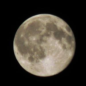 今日の深夜から満月です♪お財布フリフリしましょ…