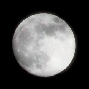 皆既月食スーパームーン(天気次第?)   (((o(*゚▽゚*)o)))