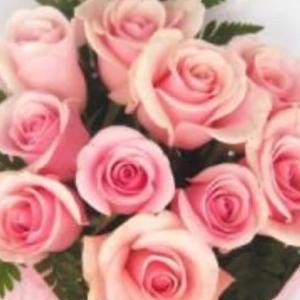 力をぬいて・薔薇の花
