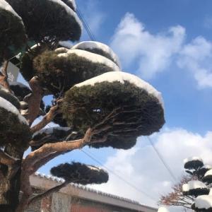 夢・雪景色