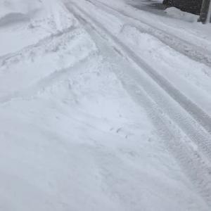 暴風雪注意報発令中!