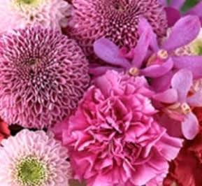 人生は短いから・美しい花たち。