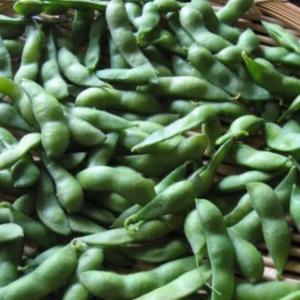 枝豆が美味しい。