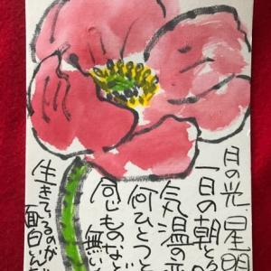 ポピーの花・絵手紙