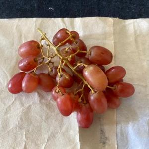 オーストラリア産葡萄・絵手紙