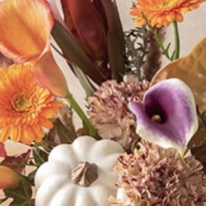 美しい花に魅入る
