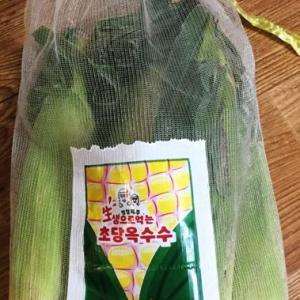 タメしてみました!生で食べられるトウモロコシ、超糖オクスス!