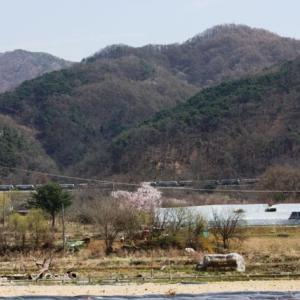 電車が通過するのは今年いっぱいまで・観雪川橋梁(江原道原州)~築79年の小さな鉄橋~