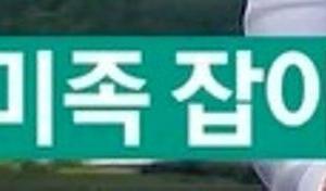 韓国のこれからの旅行トレンドは「ピミ族」?!