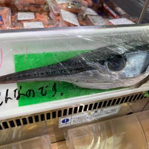 スーパーの鮮魚コーナーでダツと遭遇(°▽°)