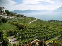 スイス旅行その10 (フランス領シャモニーへ)