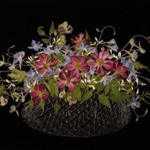 器の花たち