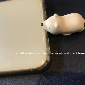 白熊とiPhone