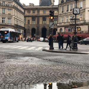 デモンストレーションデー《パリ2》-Demonstration Day-