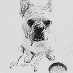 鉛筆画を描いて思うこと《改訂・再掲》 - Value of drawing -