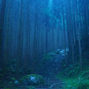 ロケハン 36《熊野》- Location Hunting 36 《Kumano》 -