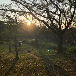 秋を快適に過ごすために☆