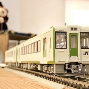 JR東日本 キハ110系200番台・その2 カシワギカフェ