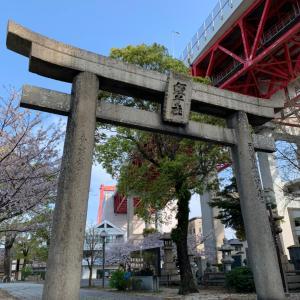 【神社巡り】若松恵比寿神社★