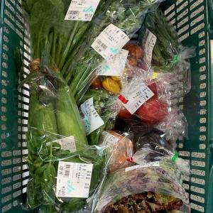 御殿場野菜の食生活8