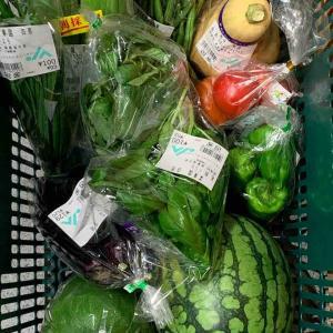 御殿場野菜の食生活10