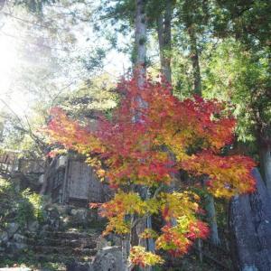 飛騨高山の紅葉~飛騨の里~