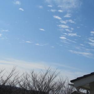 とうとう2週間の学校閉鎖・・・新型コロナの猛威は日本を襲う