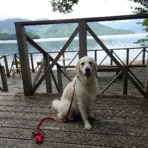 久しぶりの中禅寺湖