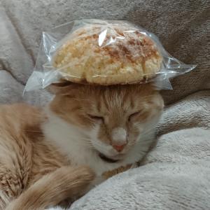 あめロンパン