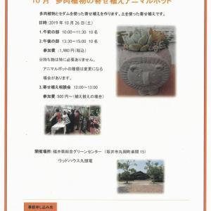 福井県総合グリーンセンター寄せ植え教室のご案内
