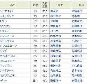 [54]大井~東京盃予想
