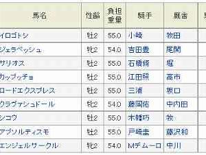 (65)東京~サウジアラビアRC予想