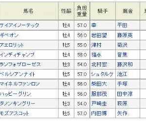 (67)東京~毎日王冠予想