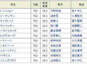 [78]川崎~ロジータ記念予想