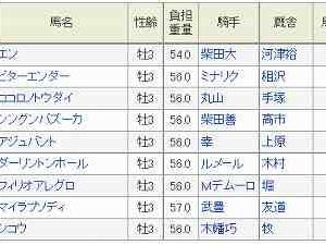 (20)東京~共同通信杯予想